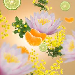 Aroma D-Stress Douceur de Fruits