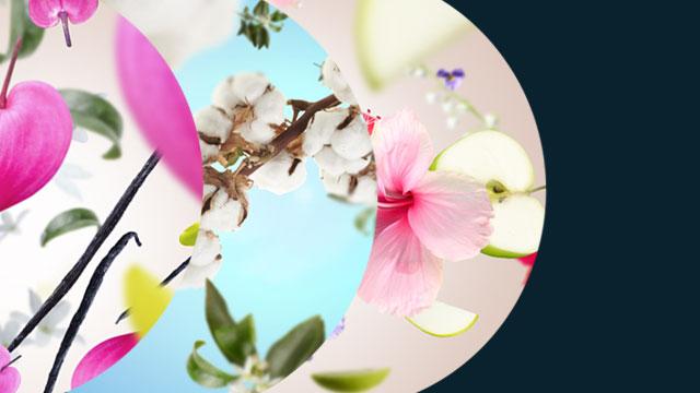 Selectie van bloemenparfums.