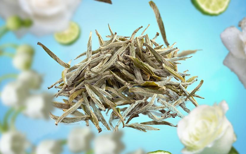 thé Blanc Pureté
